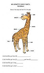 ... worksheets > The animals > Animal body parts > Animal body parts