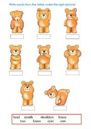 English Worksheets: body part