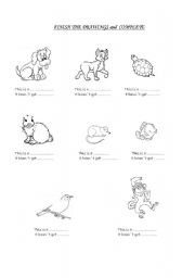 English Worksheets: Finish the drawing and complete