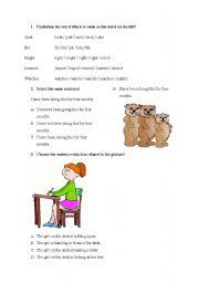 English Worksheets: testing understanding