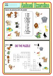 English Worksheets: Animal Exercise