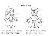 English Worksheets: Parts of body