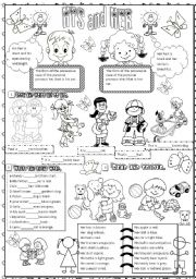 English Worksheet: his and her