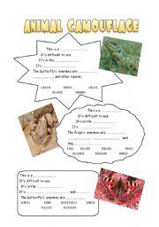 English worksheets: ANIMAL CAMOUFLAGE