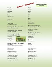 English Worksheets: Common Expressions