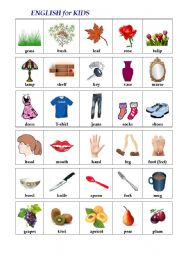 English Worksheets: ENGLISH in PICTURES (1st words)