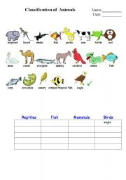 English Worksheet: classification of animals 1.