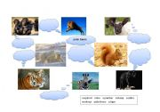 English Worksheets: Animals (part 3)