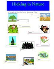 English worksheet: Hicking in nature