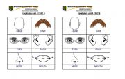 English Worksheets: BODY FACE