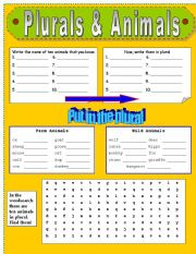 English Worksheets: PLURALS & ANIMALS