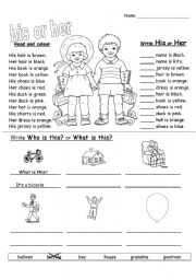 English Worksheet: his or her