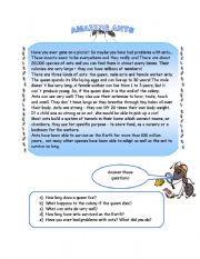 English Worksheets: ANTS