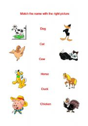 English Worksheets: The animals.