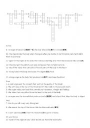 English Worksheets: introduction to internal organs(crosswords)
