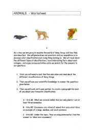 English Worksheets: The world of animals