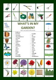 English Worksheet: What�s in my garden?