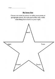 English Worksheets: Sense Star
