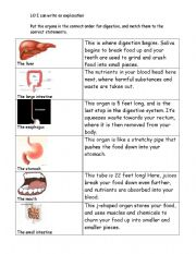 English Worksheets: Digestion explanation