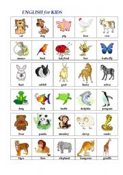 English Worksheets: ENGLISH in PICTURES (animals)