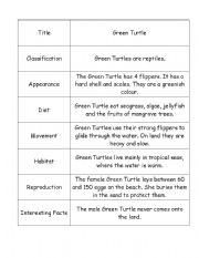 English Worksheets: Green Turtle Information Report