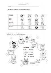 English Worksheets: ENGLISH TEST - ANIMAL ABILITY