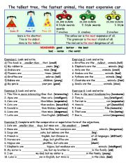 English Worksheet: Superlatives and Comparison Revision