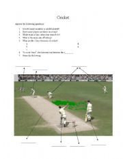 English Worksheet: What is cricket?
