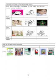 English Worksheets: medical english