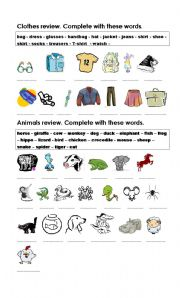 Clothes and Animals Review