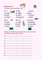 English Worksheets: What can wild animals do?