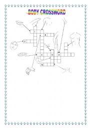 English Worksheet: BODY CROSSWORD