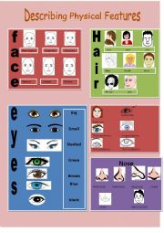 English Worksheets: describing physical features