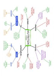 NUTRITION and NUTRIENTS Mind Map (Concept Map) plus exercises