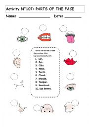 English Worksheets: No 107 THE PARTS OF THE FACE