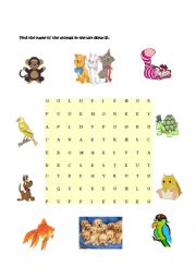 English Worksheets: Animals at home - Part III