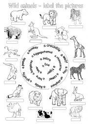 English Worksheets: Wild animals-label the pictures