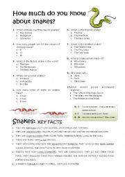 English Worksheets: Snakes
