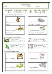 English Worksheets: It isn�t a dog