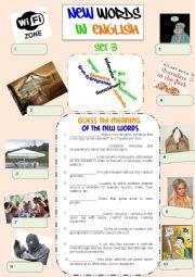 English Worksheet: New Words in English - Set 3
