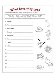 English Worksheet: What Have They Got?
