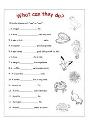 english worksheets the animals worksheets page 242. Black Bedroom Furniture Sets. Home Design Ideas