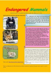 English Worksheet: endangered mammals