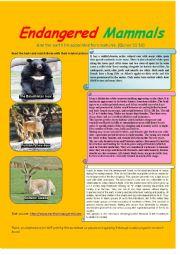English Worksheet: endangered mammals