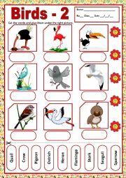 English Worksheet: BIRDS 2 - MATCHING