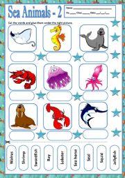 English Worksheet: SEA ANIMALS 2 - MATCHING