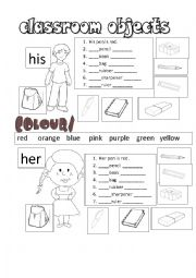English Worksheet: his her