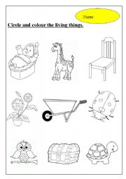 English Worksheet: living and non-living things