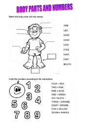 English Worksheets: BODY PARTS AND NUMBERS
