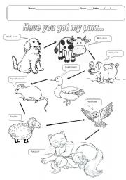 English Worksheets: HAVE YOU GOT MY PURR